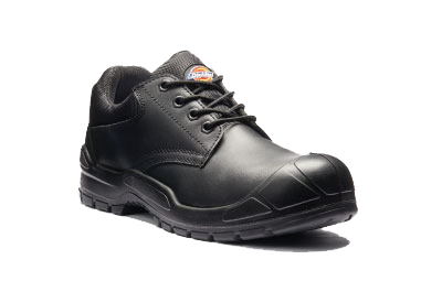 GFP002 SAFETY SHOE-S